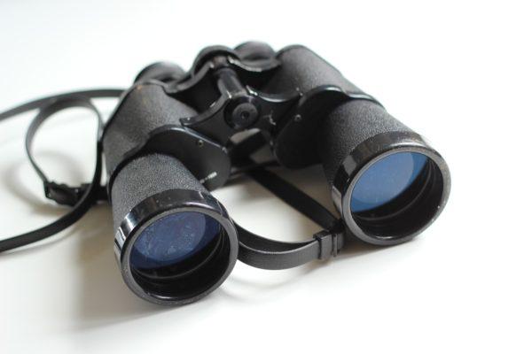 Social Media Marketing Spion