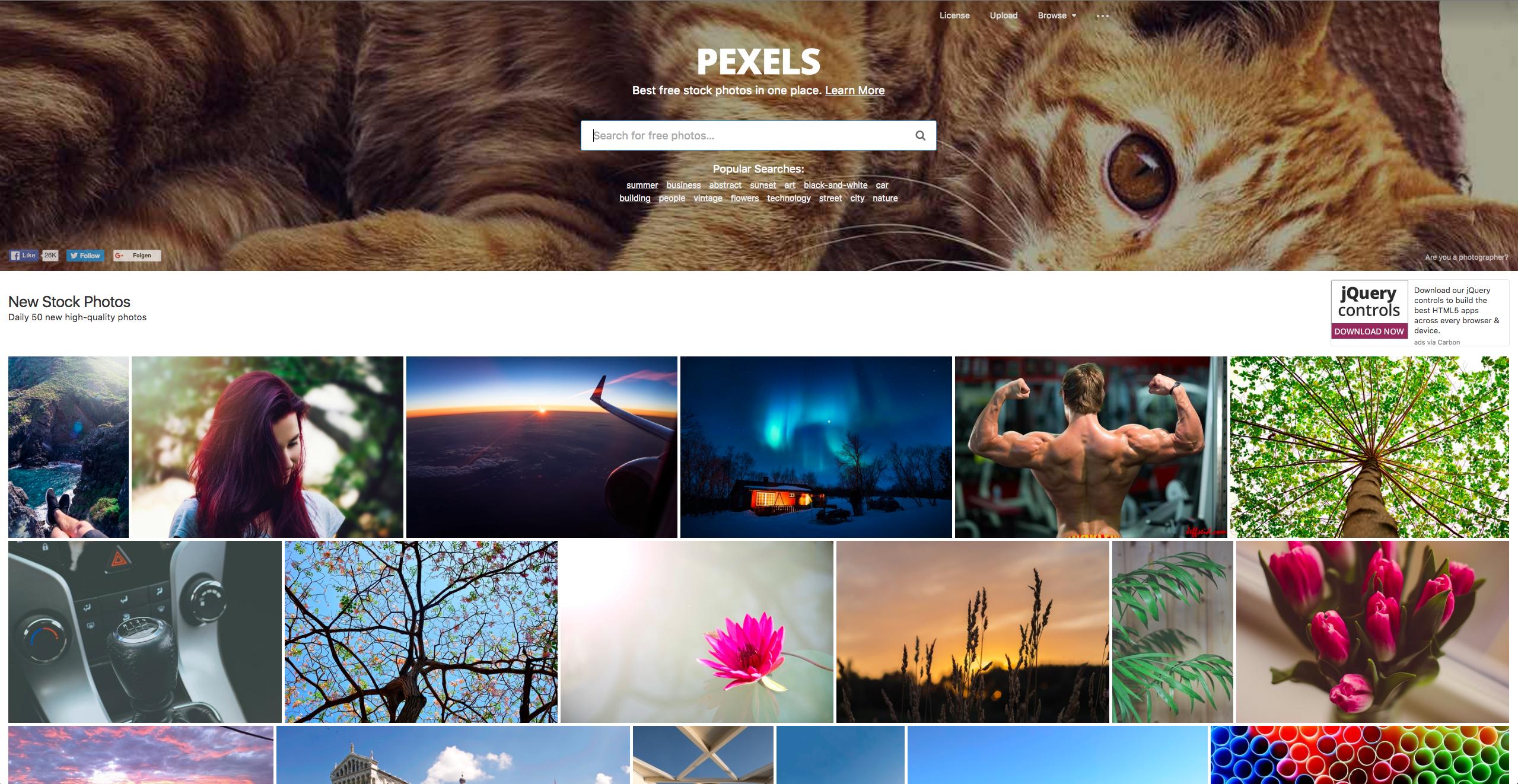 Kostenlose Bilder auf Pexels